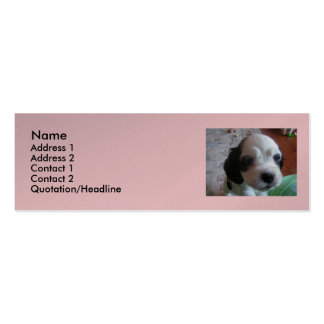 A day is the dog house Double-Sided mini business cards (Pack of 20)