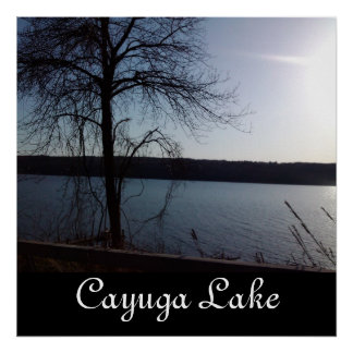 A DAY ON CAYUGA LAKE poster