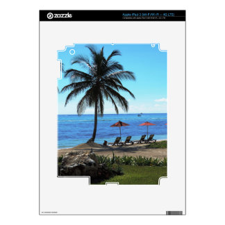 A day under the palm tree iPad 3 skin