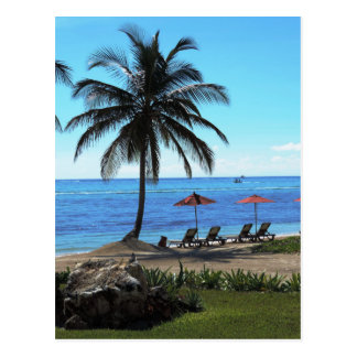 A day under the palm tree postcard