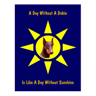 A Day Without A Dobie Dog Lovers Postcard