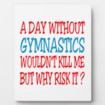 A Day Without Gymnastics Wouldn't Kill Me Plaques