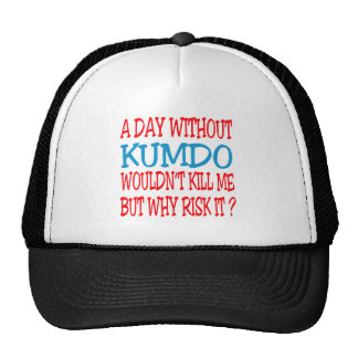 A Day Without Kumdo. Mesh Hat