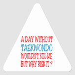 A Day Without Taekwondo Wouldn't Kill Me But Why R Sticker