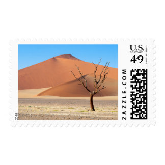 A dead tree on a desert plain with dunes postage