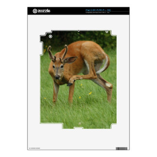 A Dear Deer Itch Decal For The iPad 2