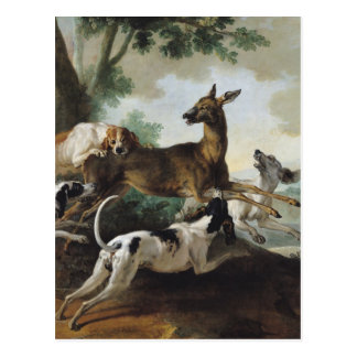 A Deer Chased by Dogs, 1725 Postcard