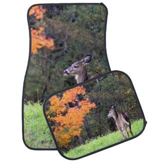 A Deer in the Field in Autumn Car Floor Mat