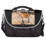 A Deer Laptop Bag
