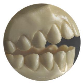 A dental model dinner plate