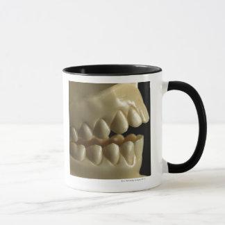 A dental model mug