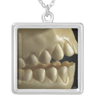 A dental model silver plated necklace