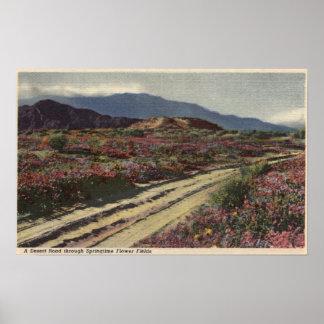 A Desert Road through Springtime Flower Fields Poster