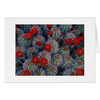 """""""A Desert Rose Garden"""" Card"""