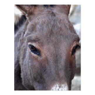 A detail photo of a donkey head. letterhead