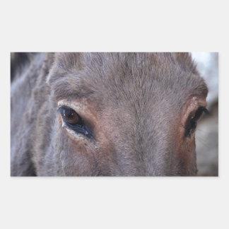 A detail photo of a donkey head. rectangular sticker