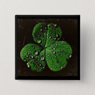 A Dew Covered Shamrock Button