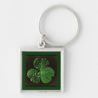 A Dew Covered Shamrock Keychain
