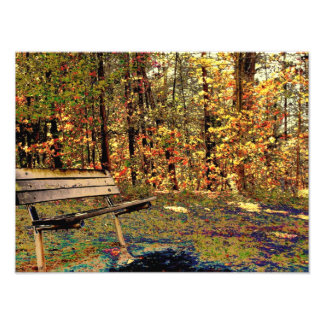 A different type of Fall day Photo Print