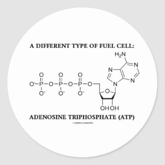 A Different Type Of Fuel Cell (ATP) Classic Round Sticker