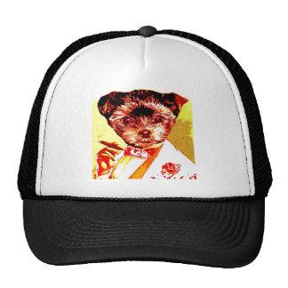 a differnt dog person trucker hat