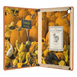 A display of gourds at the Moulton Farm Case For iPad Air