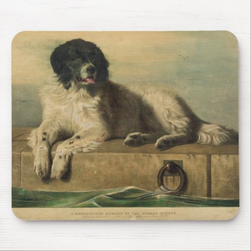 A Distinguished Member of the Humane Society Mousepads