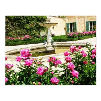 A Divine Rose Garden Picture Postcard