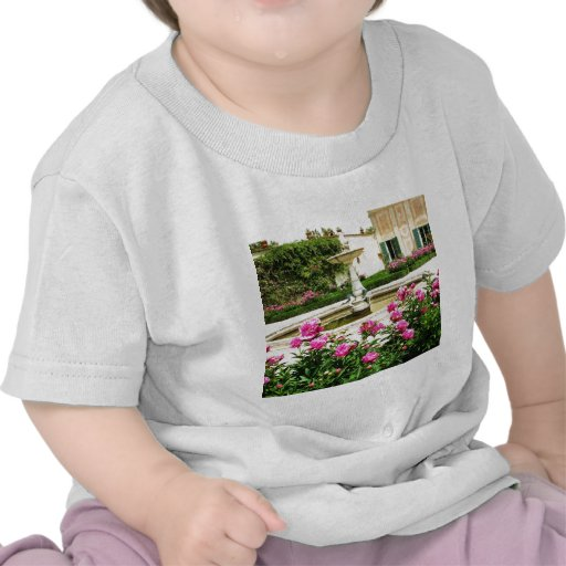 A Divine Rose Garden Picture Tshirts