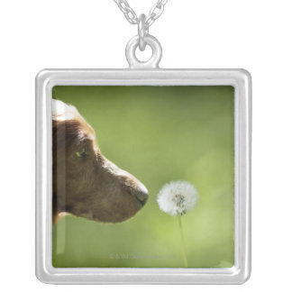 A dog and a dandelion. silver plated necklace
