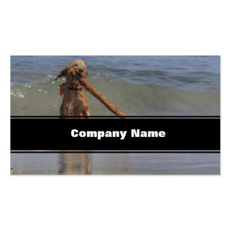 A Dog Day Afternoon Business Card
