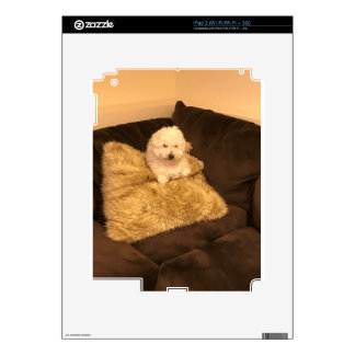 A dog decals for the iPad 2
