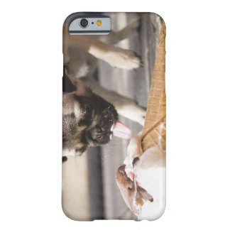 A dog eating an ice cream from a pavement barely there iPhone 6 case