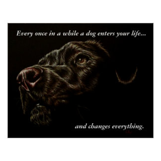 A Dog Enters Your Life - Black Dog Poster