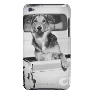 A dog in a car. barely there iPod cases