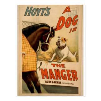 A dog in the Manger, 'Hoyt's' Vintage Theater Postcard