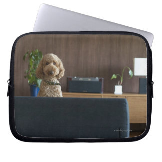 A dog in the riving room computer sleeve