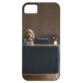 A dog in the riving room iPhone SE/5/5s case