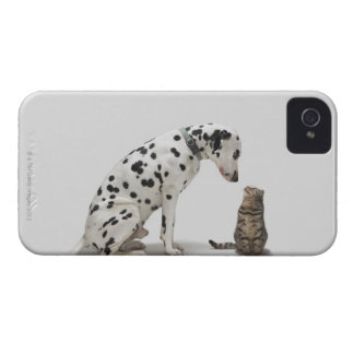 A dog looking at a cat iPhone 4 cover