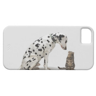 A dog looking at a cat iPhone 5 cases