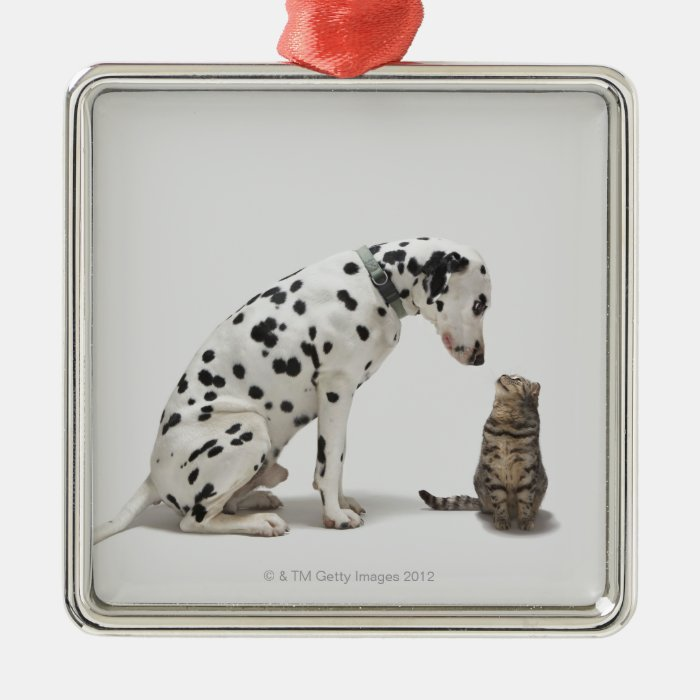 A dog looking at a cat metal ornament