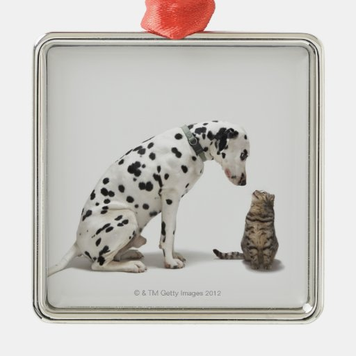 A dog looking at a cat square metal christmas ornament