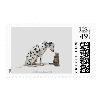A dog looking at a cat postage