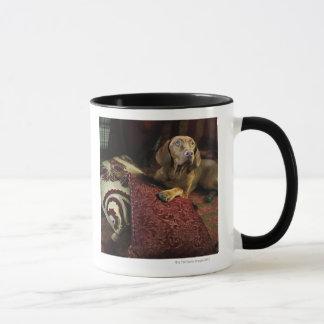 A dog lying on pillows. mug
