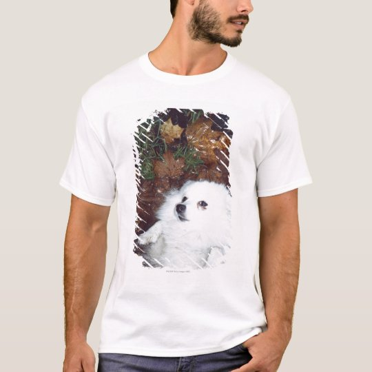 A dog lying on wet autumn leaves. T-Shirt
