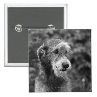 A dog outside. pinback button