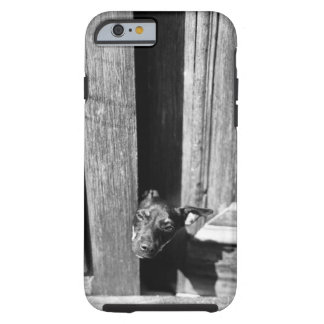 A dog peeking out from a door, close-up. tough iPhone 6 case