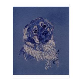 A Dog Understands (TM) Postcard