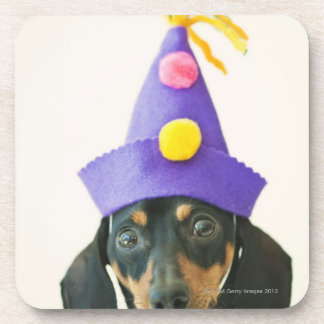 A dog wearing a funny hat coaster