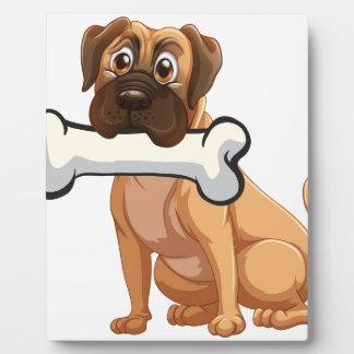 A dog with a bone plaque